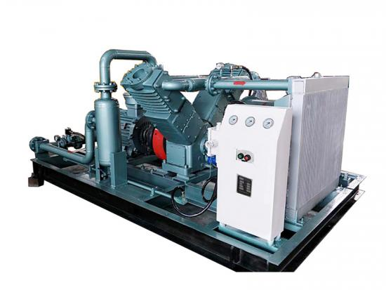 CNG substation compressor